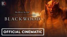 Трейлер видео игры The Elder Scrolls Online